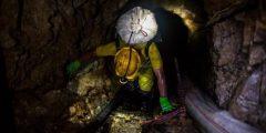 فطريات أسترالية تستكشف مناجم الذهب