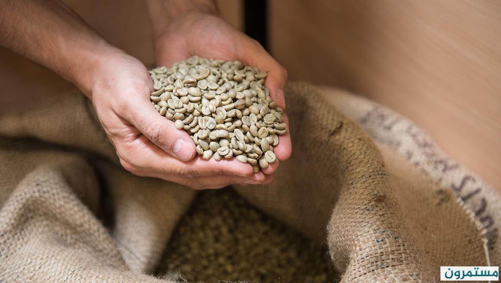 القهوة الخضراء سلاحك لإنقاص الوزن .. فوائدها و طريقة اعدادها
