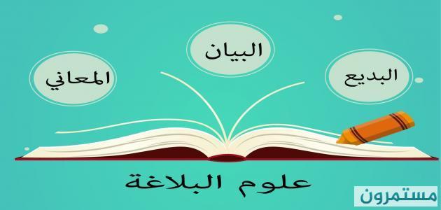 البلاغية في اللغة العربية