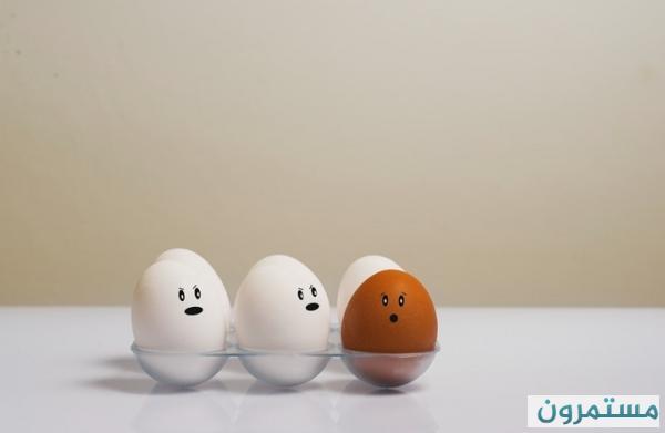 هذا ما سيحصل لجسمك حال تناولك البيض يوميا