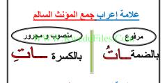 عربي تحضير انواع الجموع 3