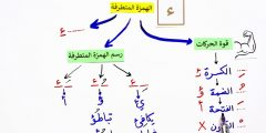 hamza extremist learns 4 cases grammatical rules 6 practical examples