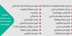 ديوان الموظفين غزة يعيد فتح التسجيل لوظائف