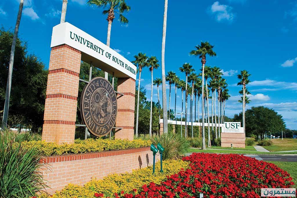 منحة جامعة فلوريدا لدراسة درجة البكالوريوس في أمريكا