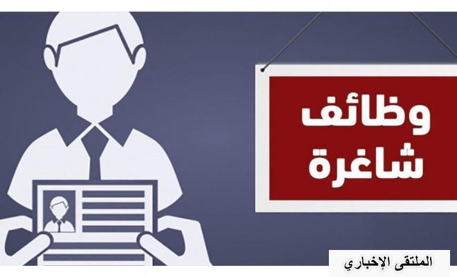 اخر الاخبار: وظيفة شاغرة في غزة براتب 1259 دولار شهرياً